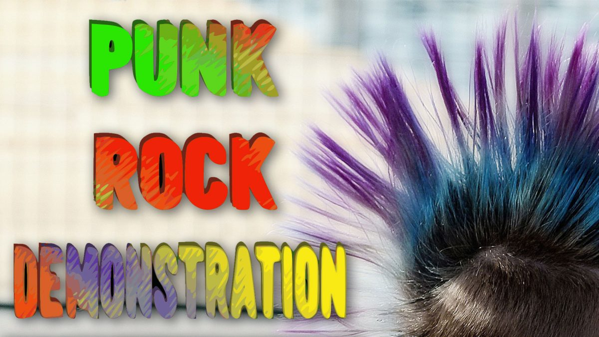 Punk Rock Demonstration is coming to NoCo FM!